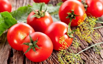 heat-resistant tomatoes for the south of Russia