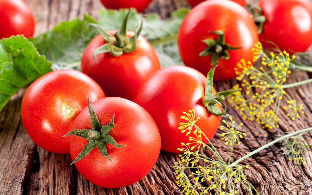 топлоустойчиви домати за южната част на Русия