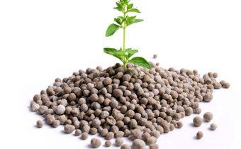 Potash fertilizers