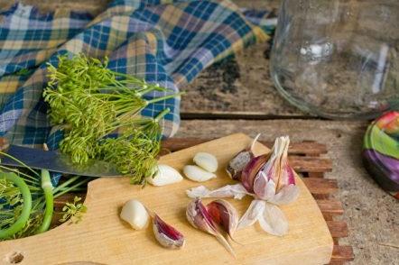 garlic and dill processing
