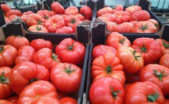 картофен аромат на домати