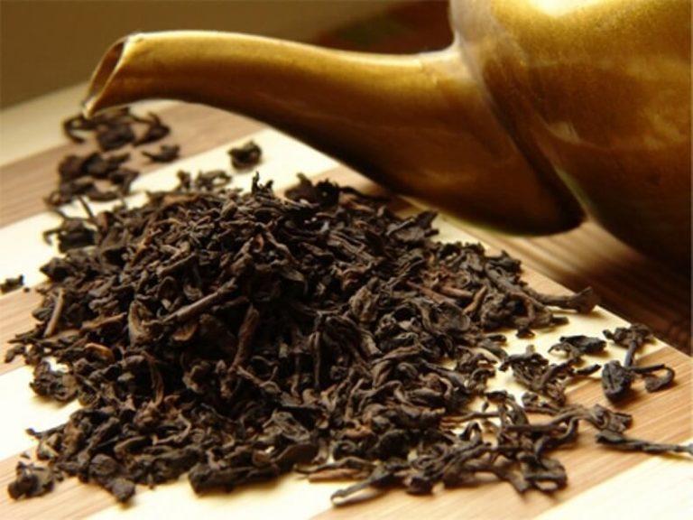 infusion de thé comme engrais