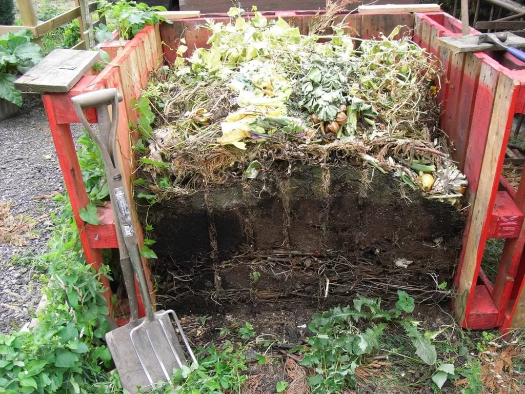 compost for tomatoes