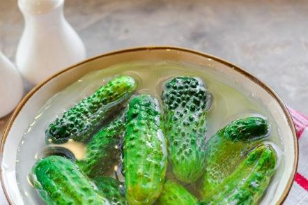 prepare cucumbers