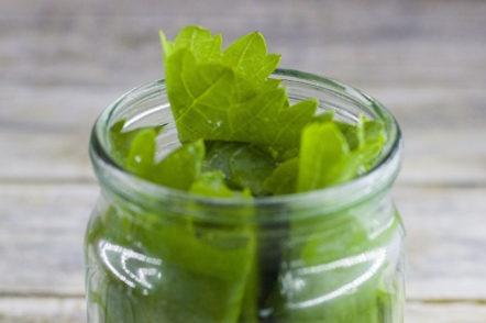put in a jar of cucumbers