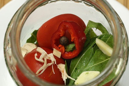 put the tomatoes in a jar