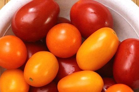 we select tomatoes