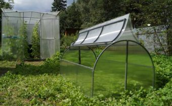 Polycarbonate greenhouses with opening top do it yourself: drawings, photos, reviews