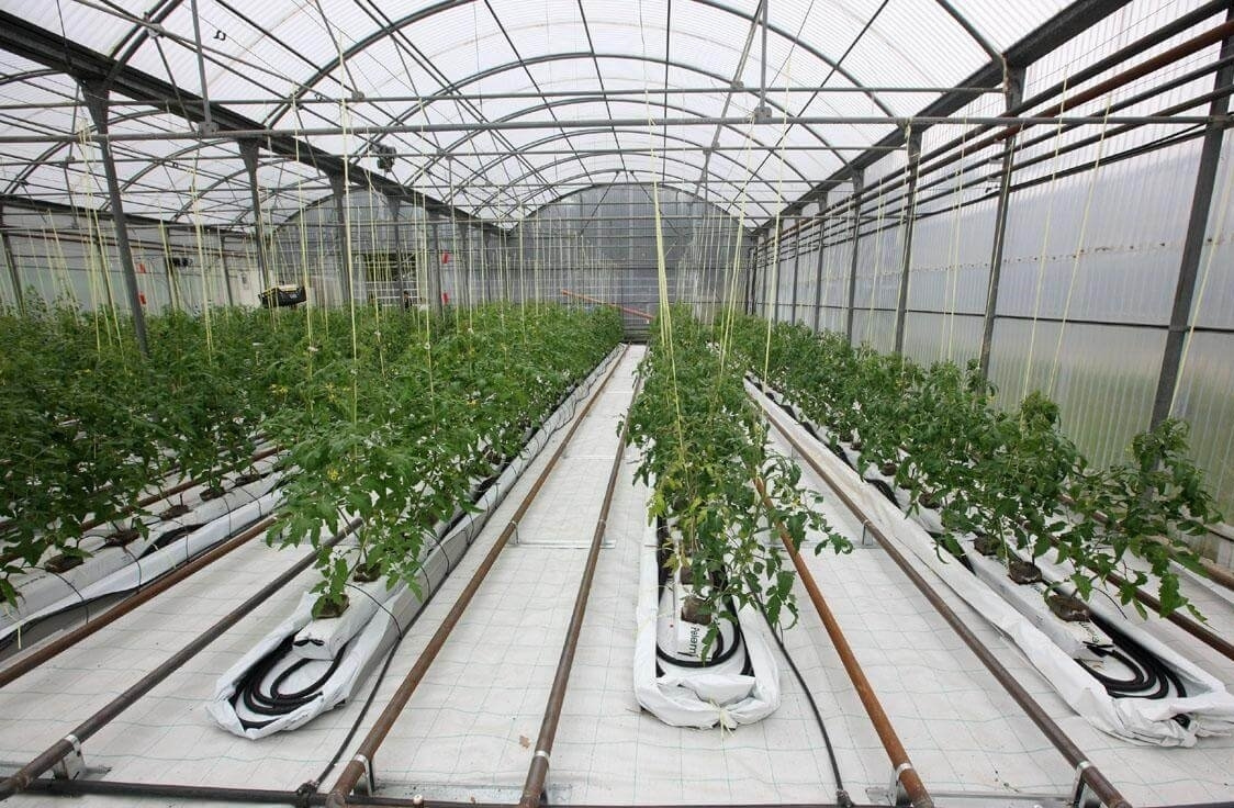 heating greenhouses in winter