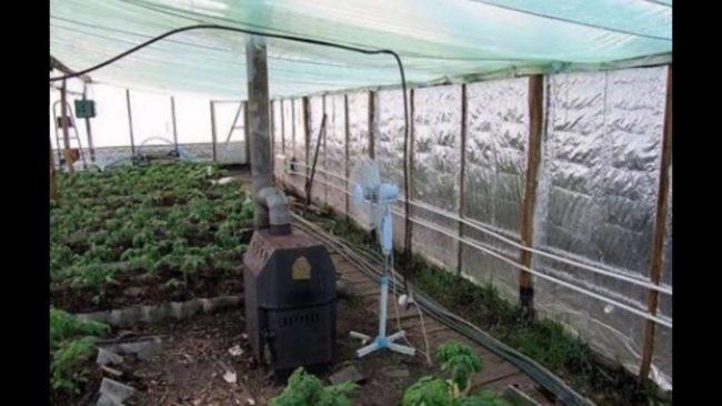 отопление на оранжерии през зимата