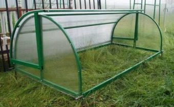 greenhouse bread box