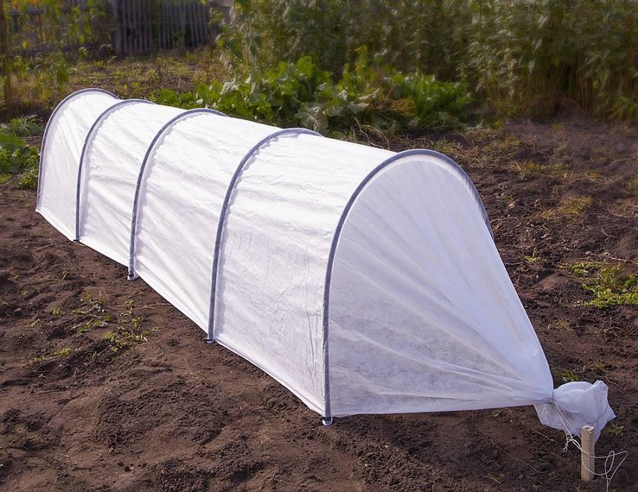 arc greenhouse