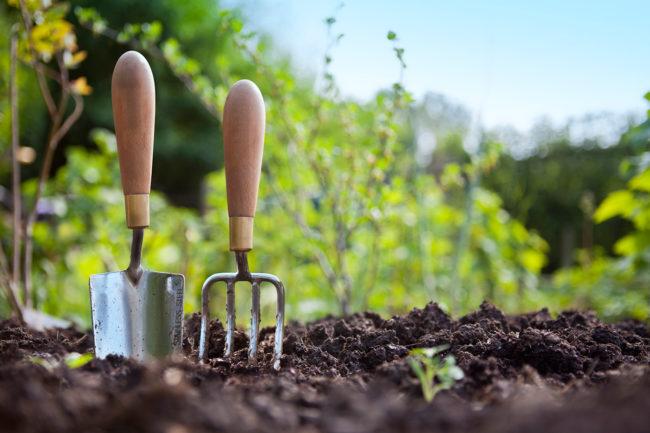 изчерпване на почвата