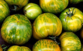 Сортове зелен домат