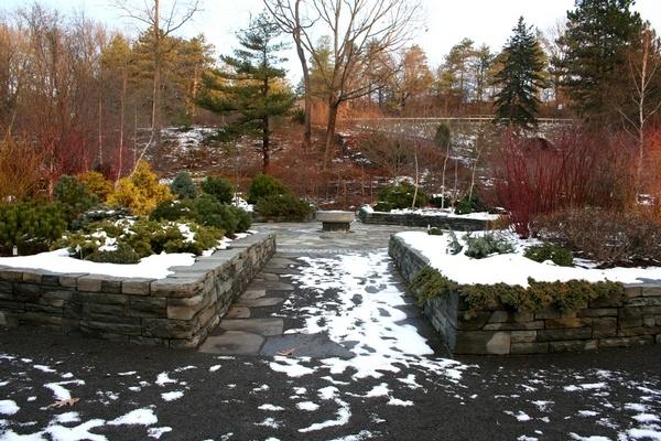 גן בפברואר