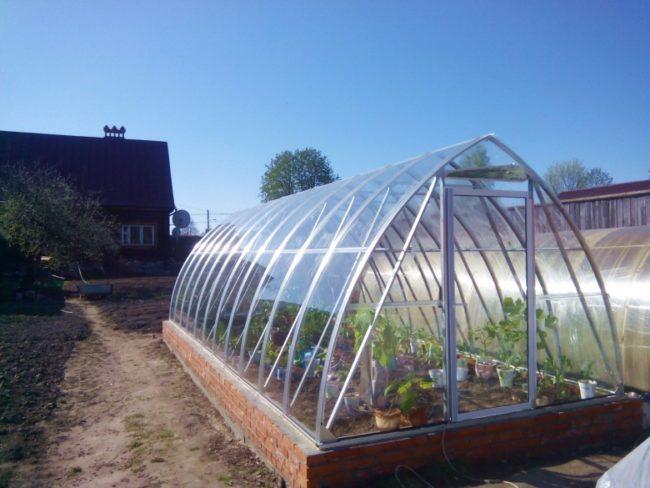 Dvukhskatnaya greenhouse of the profile pipe