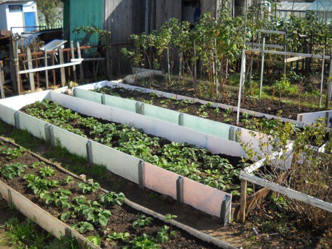 Contre des lits de jardin clôturés
