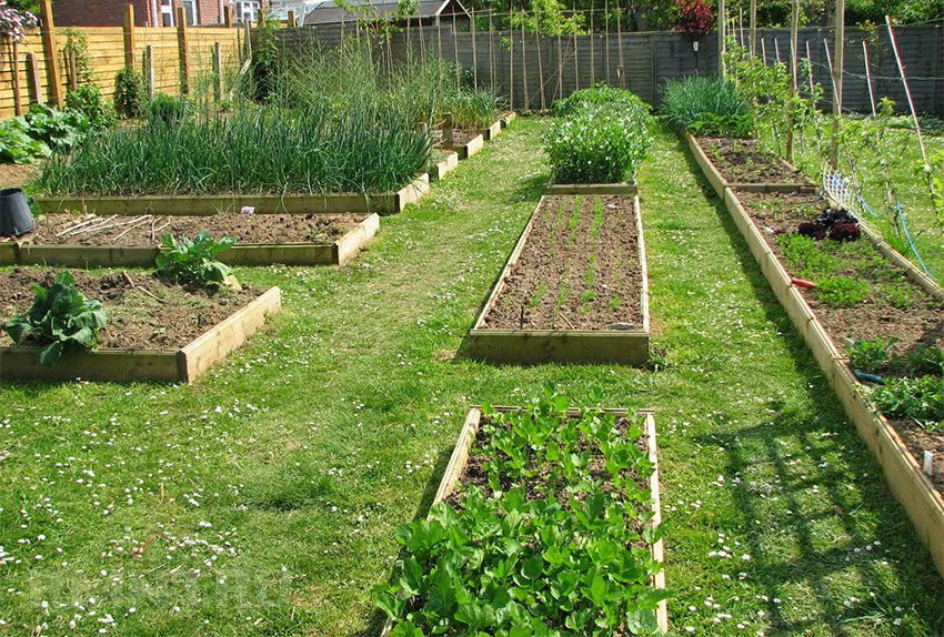 Планиране на градината