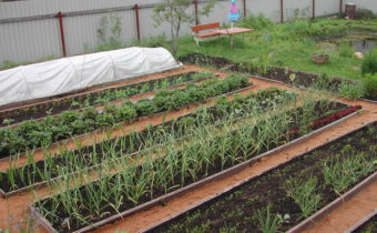 Jardins clôturés